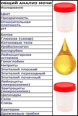 лейкоциты в моче при диабете