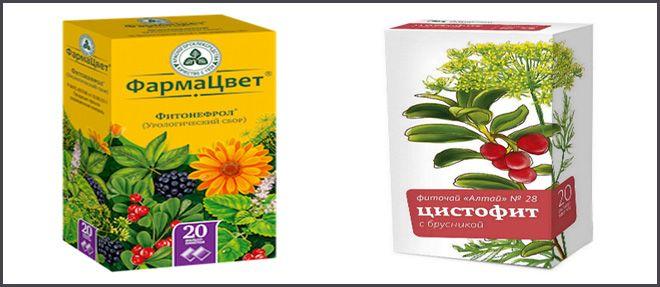 Чай при цистите: фиточаи, зеленый чай, почечный, урологические и травяные чаи.