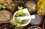 Растительные препараты для лечения цистита