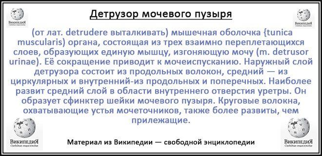 детрузор