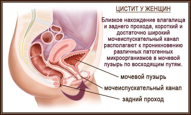 Воспалительный процесс