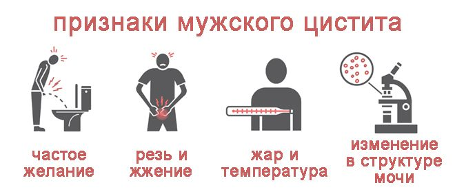признаки мужского цистита
