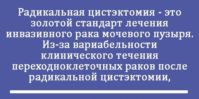 radikalnaya